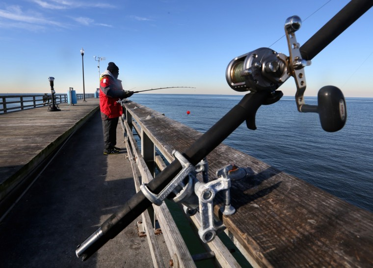 Return Of Rockfish Is Long Awaited News For Anglers