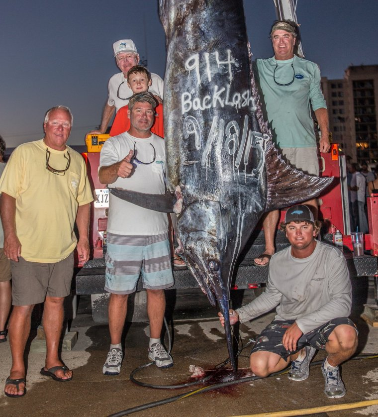 Locals net the fish of a lifetime a 914 pound marlin for Hampton roads fishing report