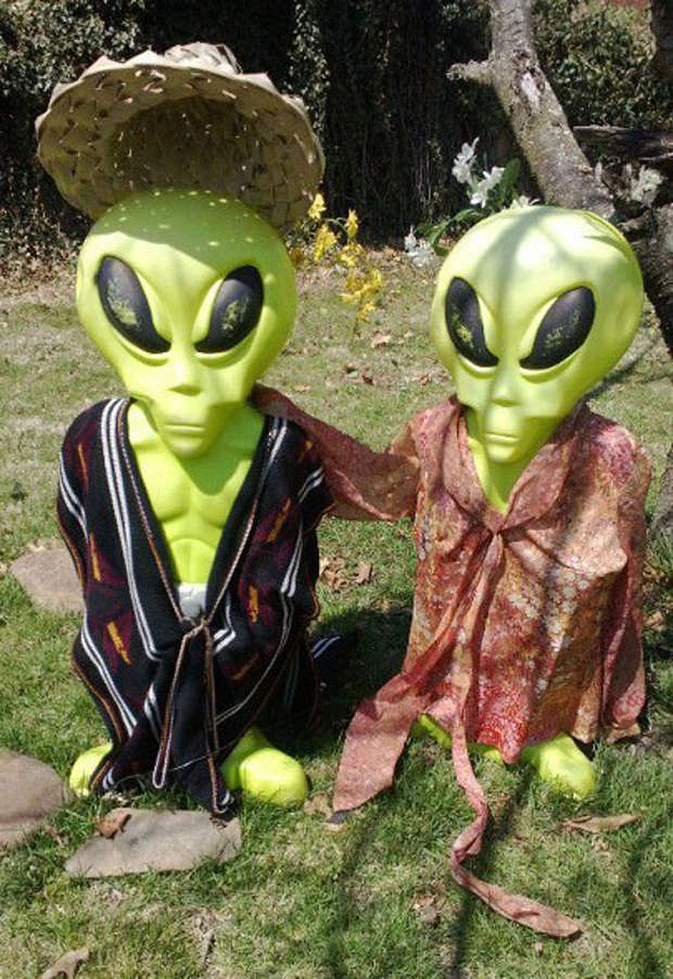 Va family wants 39 abducted 39 alien yard figures back for Alien decoration
