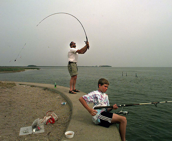 Fees supply grants to bolster north carolina fisheries for Nc fishing license cost