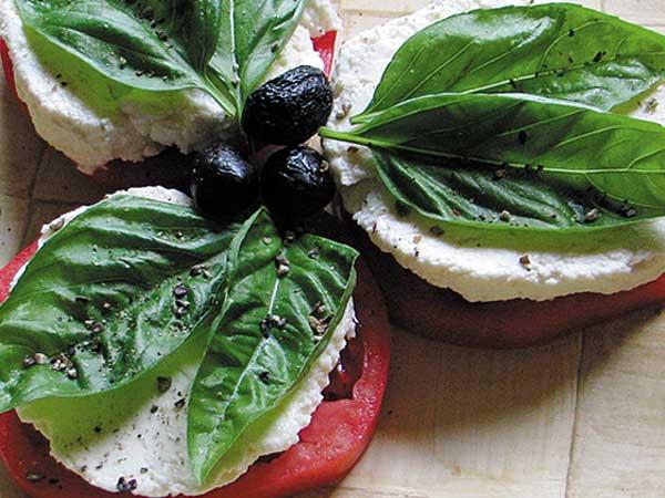 how to make your own mozzarella