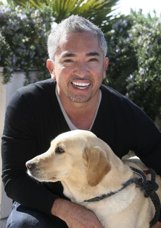 Cesar Millan Is Dog S Best Friend Really Hamptonroads