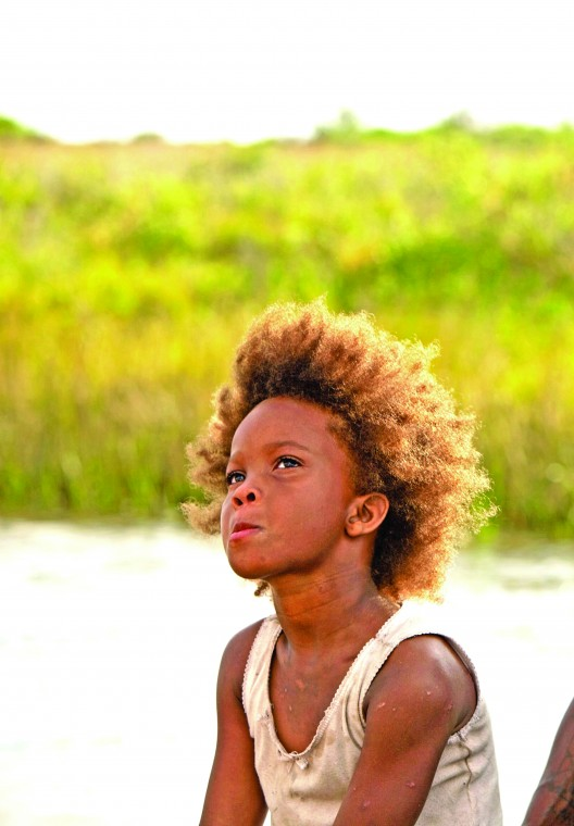 beasts of the southern wild study guide