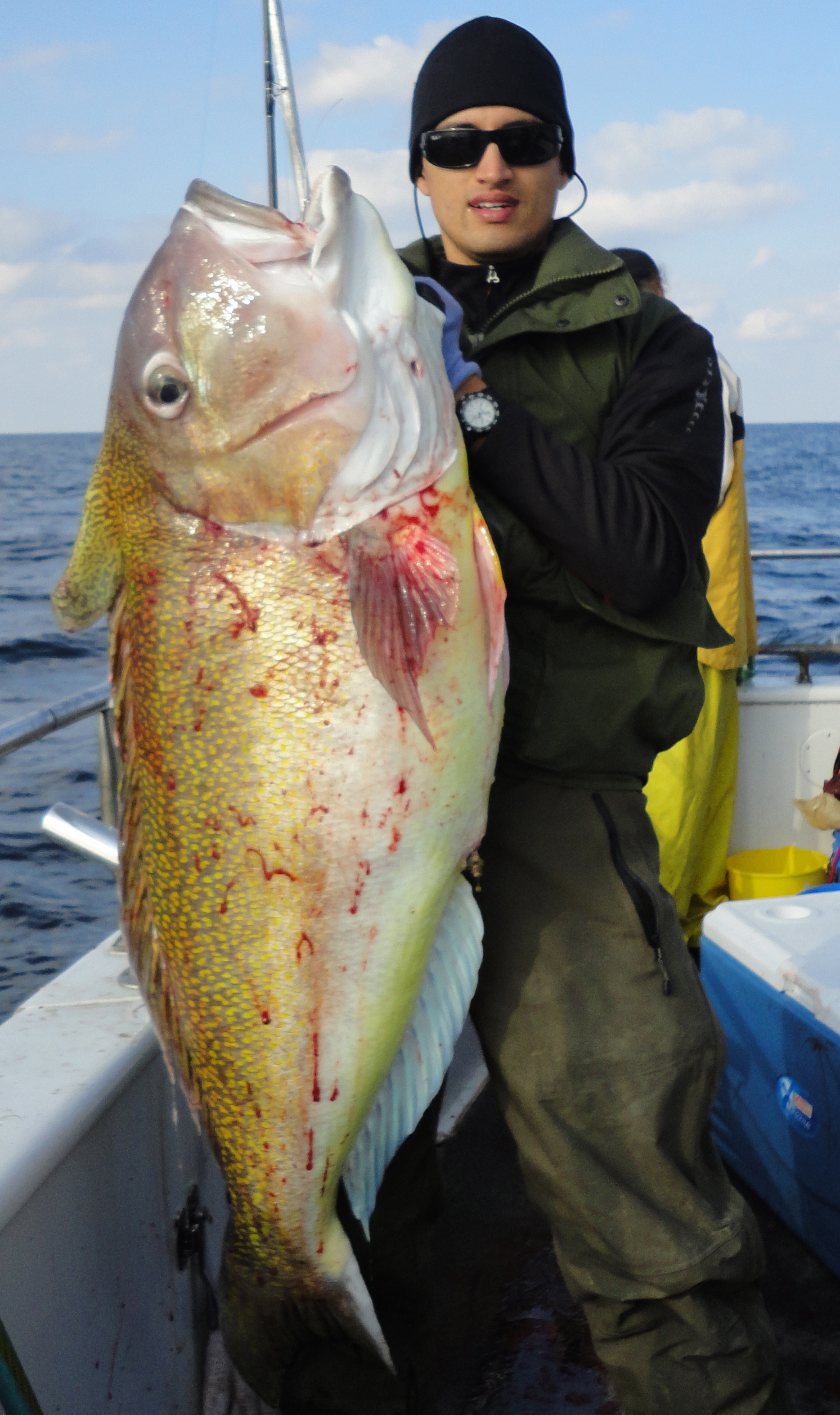 Fishing fan for Rudee inlet fishing report